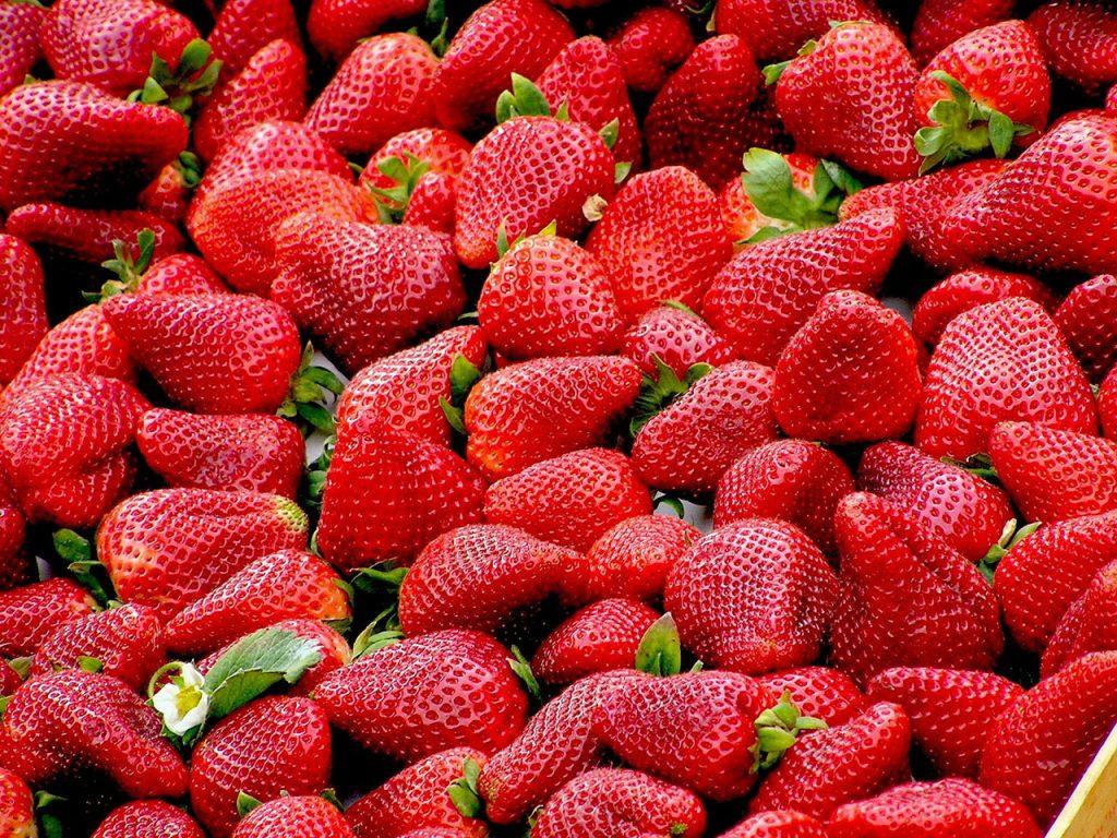 Fresas beneficios y contraindicaciones